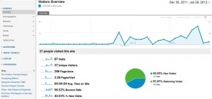 Google Analytics Shot