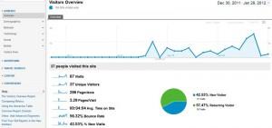 Google Analytics Shot
