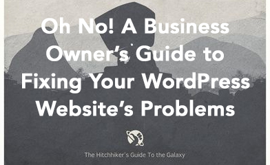 A Business Owner's Guide to Fixing Your WordPress Website's Problems